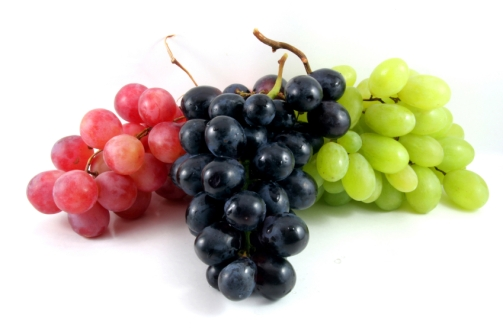 165373-849x565-grapes.jpg